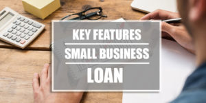 Key Features of Small business loans